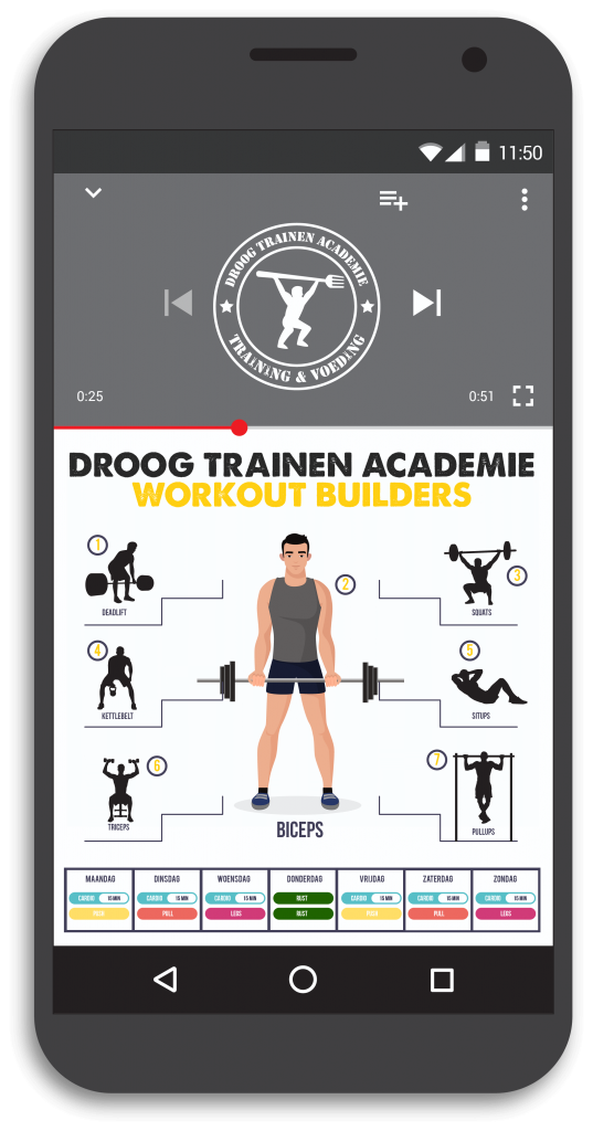 dta workout builders